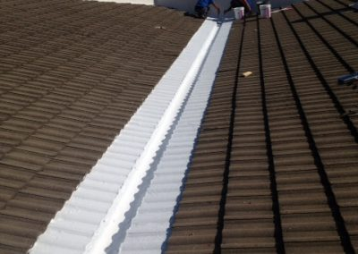 Aranda Multiservicios y limpieza - Inpermeabilzacion de fachadas y tejados-3